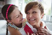 Granddaughter embracing her grandmother at home poster