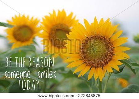 Inspirational Quotebe The Reason Someone