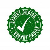 Vector Expert Choice Scratched Stamp Seal With Tick Inside. Green Expert Choice Imprint With Grunge  poster