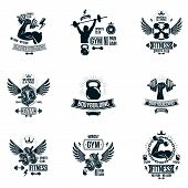 Vector Weightlifting Theme Logotypes And Inspirational Leaflets Collection Made Using Dumbbells, Bar poster