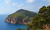 Mountain Sea Trees View. Mountain Sea Coastline View. poster