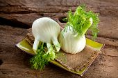 Fresh Florence Fennel Bulbs Or Fennel Bulb On Wooden Background. Healthy And Benefits Of Florence Fe poster
