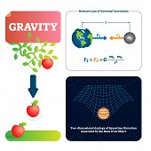 Gravity Vector Illustration. Explained Natural Force To Objects With Mass. Basics Of Universe Physic poster