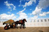 stock photo of asilah  - Cart pulled by horse in Asilah old medina - JPG