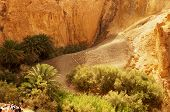 stock photo of tozeur  - View of the welcome message on the mountain of Chebika oasis in Tunisia - JPG