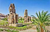Постер, плакат: Колоссы Мемнона Долина царей Луксор Египет