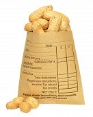 stock photo of manila paper  - A brown paper wage packet containing peanuts - JPG