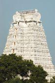 picture of trichy  - Sri Azhagiya Manavala Perumal Temple is a Divya desam temple situated in Urayoor inside Trichy in Tamil Nadu - JPG