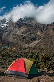 stock photo of kilimanjaro  - Tents camped in the shadow of Kilimanjaro on the Machame route - JPG