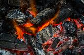 picture of charcoal  - Fire on charcoal for food grilling in an oven - JPG
