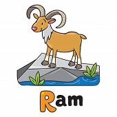 picture of ram  - Children vector illustration of funny wild urial or ram on a rock near the river and the inscription  - JPG