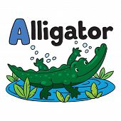 image of alligator baby  - Children vector illustration of little funny alligator or crocodile swims in the lake - JPG