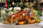 foto of kumquat  - Citrus glazed roasted duck stuffed with rice garnished with apples kumquats and sage - JPG
