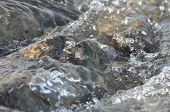 picture of crystal clear  - Stones in the river. Fast flowing water. Refreshing mountain river stream. The stream of crystal clear water.