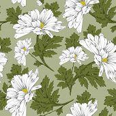 picture of daisy flower  - Retro flower seamless pattern  - JPG