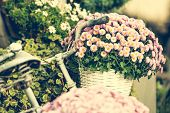 stock photo of beside  - flowers in a basket on a bicycle - JPG