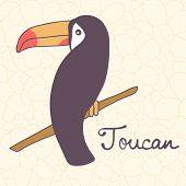 picture of toucan  - Colorful exotic toucan bird illustration in vector format - JPG