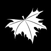 image of canada maple leaf  - The maple leaves on a black background - JPG