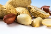 picture of shells  - Several peanuts shelled and without shell - JPG