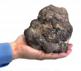 image of pooping  - Real dinosaur poop in hand called coprolite 140 million years old - JPG