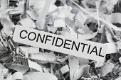 shredded paper confidential poster