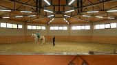 Young Girl Riding Horse Indoors. Little Girl Learns Riding With Female Trainer At Ranch. Indoor Hors poster