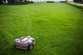 Automatic Lawnmower Robot Mower On Grass, Lawn. View Of The Large Mowed Lawn. Copy Space. poster