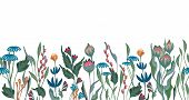 Seamless Vector Floral Border With Hand Drawn Herbs And Flowers. Pattern Endless With Blossom Flower poster