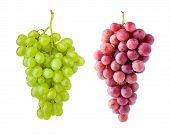 Red And Green Grape, Isolated On White Background, Clipping Path, Full Depth Of Field poster