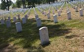 picture of arlington cemetery  - Long rows of marble grave makers in Arlington National Cemetery  - JPG
