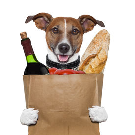image of bag-of-dog-food  - grocery bag dog wine tomatoes bread holding it - JPG