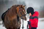 pic of breed horse  - Horse and Jockey  - JPG