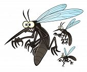 foto of gnats  - Vector illustration of flying three cartoon mosquitoes - JPG