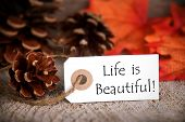 foto of proverb  - A Fall Label with the Words Life is Beautiful - JPG