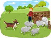 stock photo of cattle dog  - Illustration of a Shepherd Dog Herding Shop While Being Watched - JPG
