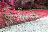 picture of lawn chair  - three chairs and lawn red background in the public garden - JPG