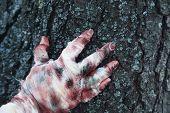 image of mummy  - Hand of mummy outdoors - JPG