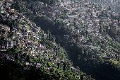 picture of darjeeling  - Cityscape - JPG