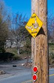 foto of duck  - Yellow DUCK CROSSING road sign with ducks family on the plate and two red reflectors below - JPG