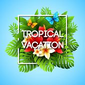 stock photo of tropical plants  - Exotic vacation - JPG