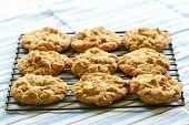 foto of racks  - Freshly baked peanut butter cookies on cooling rack - JPG
