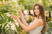 picture of loki  - Portrait of young beauty female looking on plant pot in flowers shop - JPG