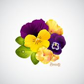 picture of naturalist  - Beauty salon identity naturalistic yellow hydrangea and pansy flower with leaves - JPG