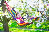 stock photo of orchard  - Child relaxing in hammock - JPG