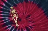 picture of grateful dead  - groovy skeleton with bright red and blue tie dye background - JPG