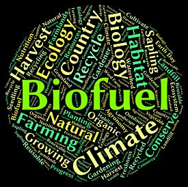 picture of biogas  - Biofuel Word Shows Renewable Energy And Biogas - JPG