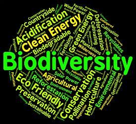 foto of biodiversity  - Biodiversity Word Means Plant Life And Animal - JPG