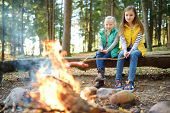 Cute Little Sisters Roasting Hotdogs On Sticks At Bonfire. Children Having Fun At Camp Fire. Camping poster