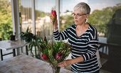 Portrait Of A Senior Woman Adding A Protea Flower To A Bouquet. Elderly Woman Enjoying Arranging Flo poster