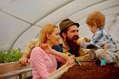 Planting. Family Planting In Greenhouse. Planting Flowers In Orangery. Mother Father And Son Plantin poster